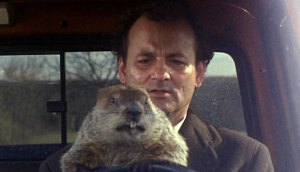 billmurray-groundhog